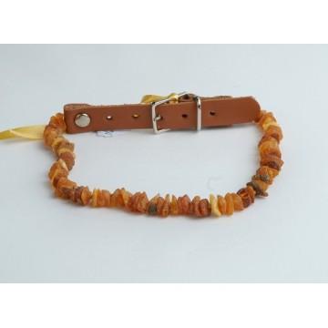 1211.140 Bernstein- Lederhalsband für Hunde